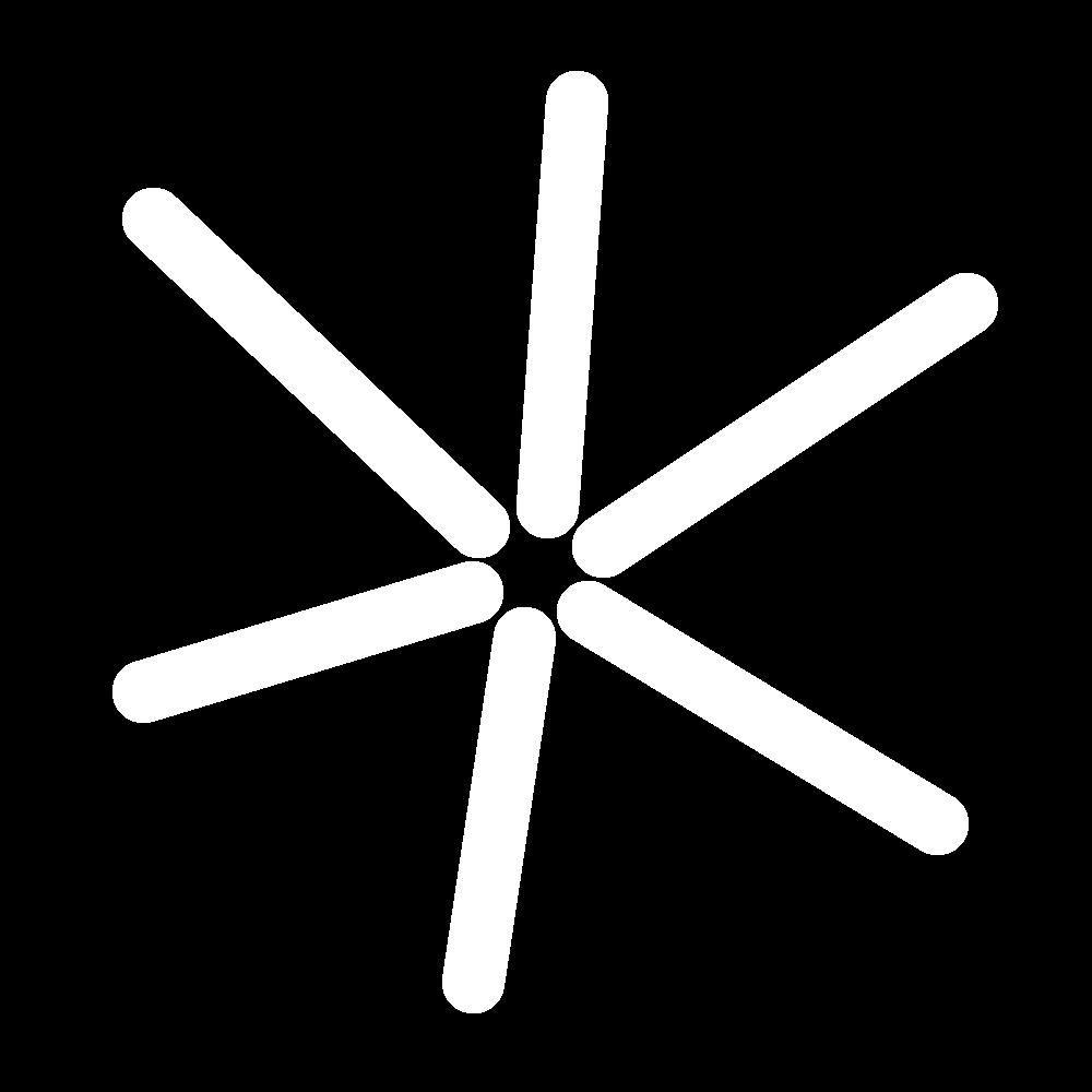 Star eyelet stitch icon