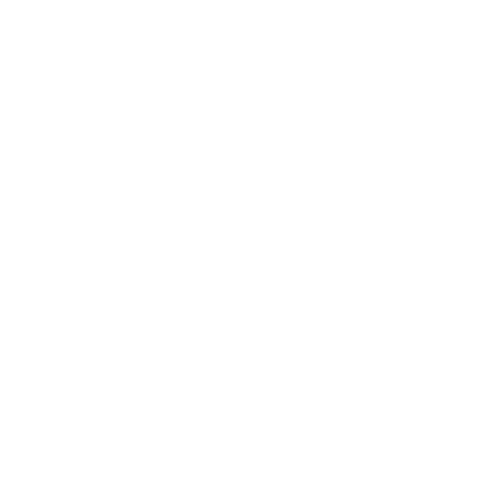 Open lace (pattern) icon