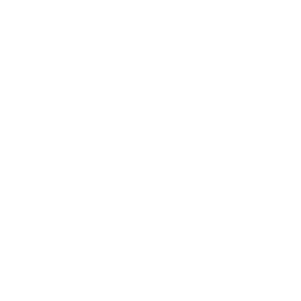 Shell stitch icon
