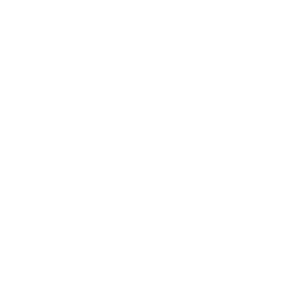 Woven wheel icon