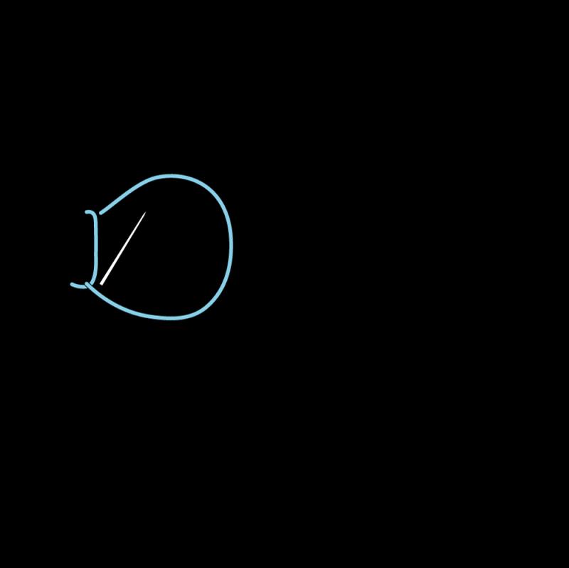 Buttonhole stitch method stage 5 illustration