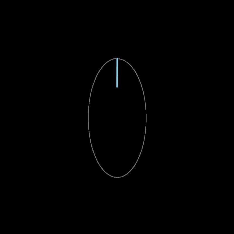 Fishbone stitch method stage 1 illustration