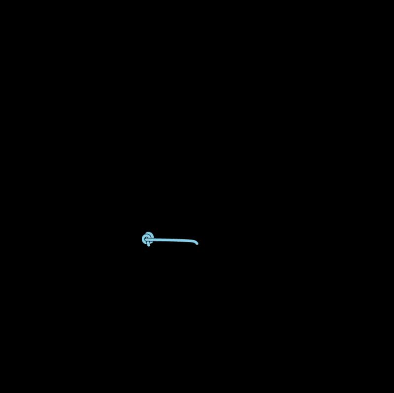 Pistil stitch method stage 5 illustration