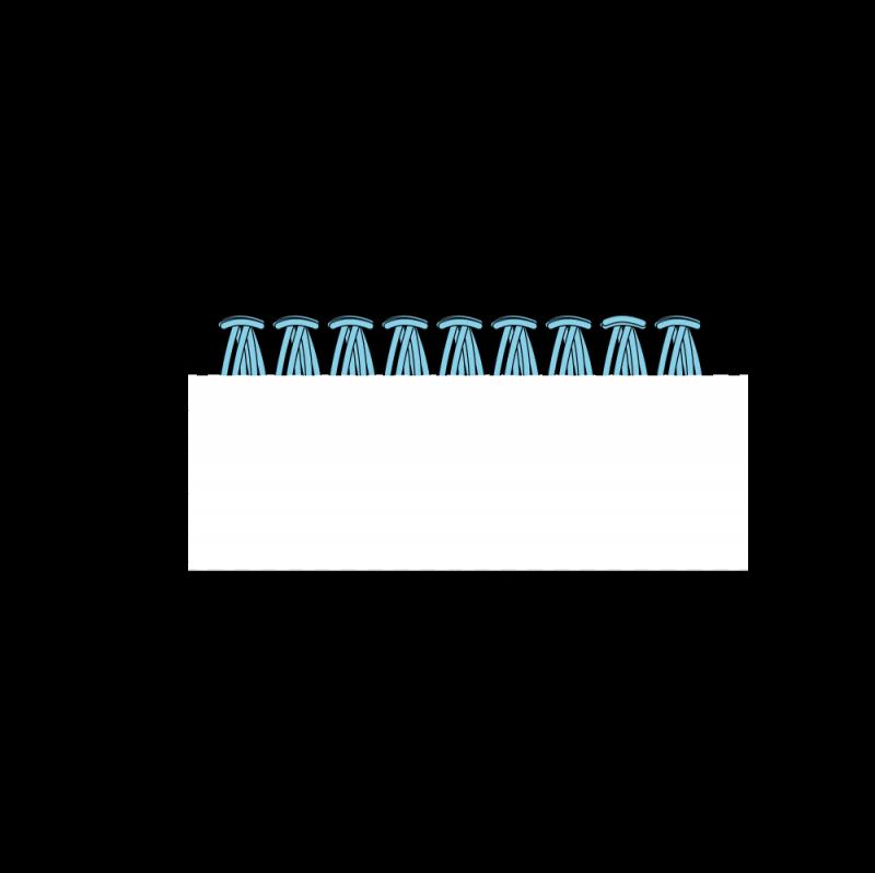Turkey rug stitch method stage 11 illustration